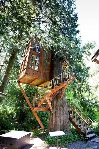 Casa na Arvore com escada reta e caracoli