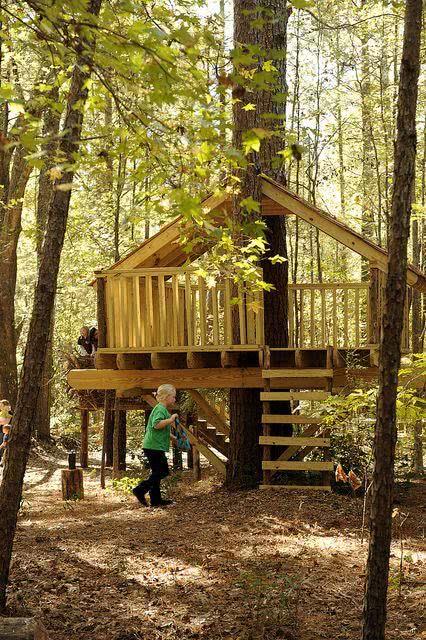 Casa na Arvore em madeira