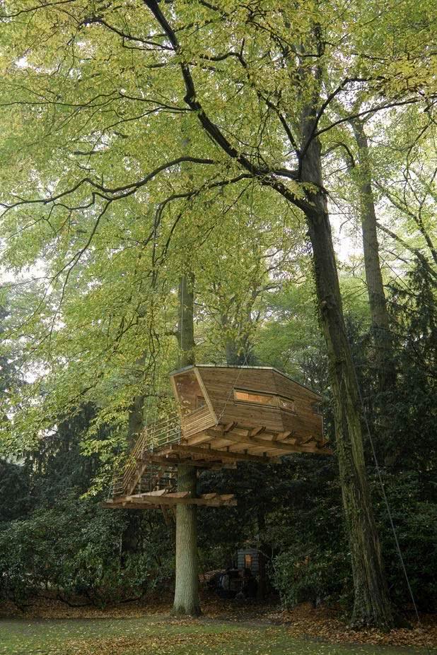 Casa na Arvore