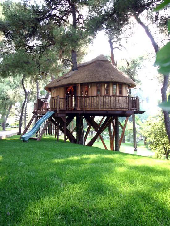 Casa na Arvore com escorregador