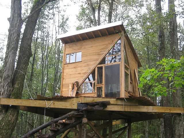 Casa na Arvore com janelas de vidro