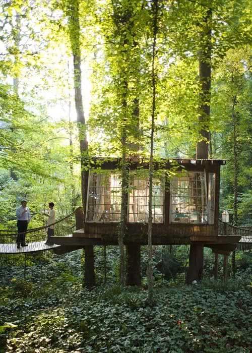 Casa na Arvore com ponte