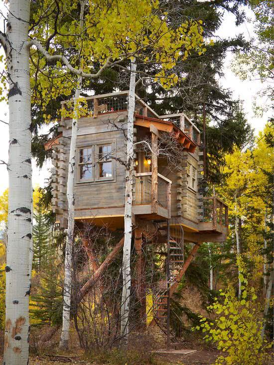 Casa na Arvore com escada caracol