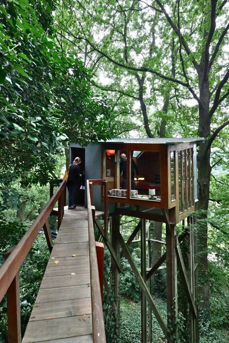 Casa na Arvore com ponte estreita