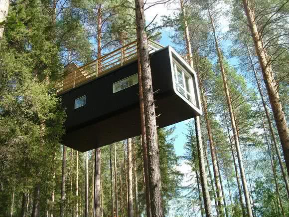 Casa na Arvore moderna com cobertura em madeira
