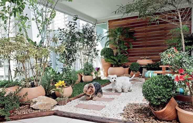 Jardim pequeno com muitos vasos