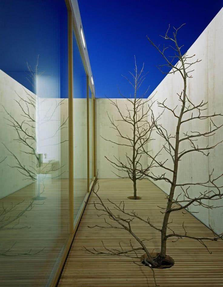 Jardim de inverno minimalista