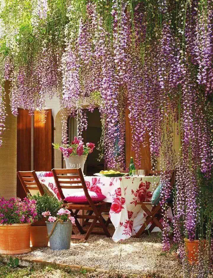 Jardim elegante e feminino