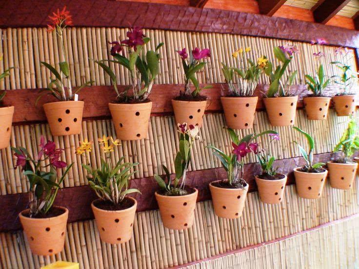 jardim vertical latas:49 Fotos de Jardim Suspenso com Vasos, Garrafas e Mais