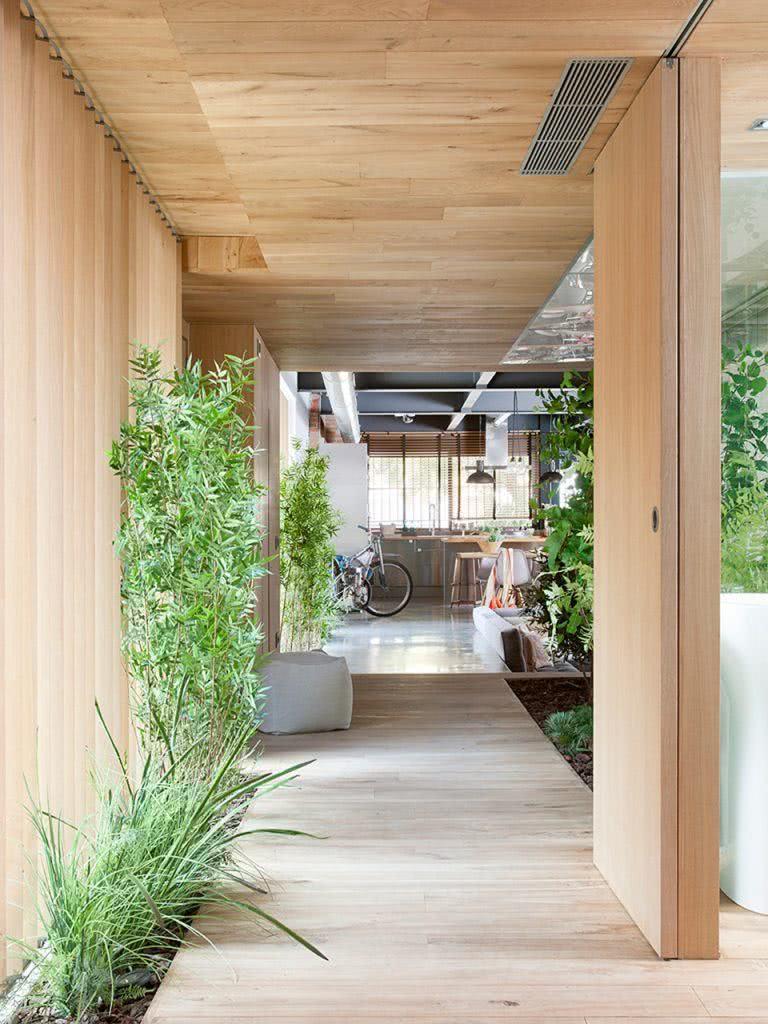 Passagem verde com plantas