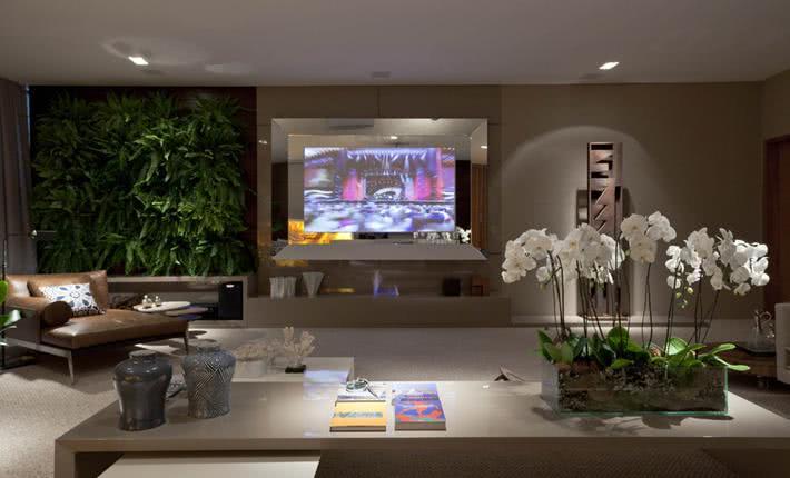 Painel De Tv Com Espelho Para Sala ~ 50 TVs Embutidas em Vidros, Espelhos e Portas Decoradas