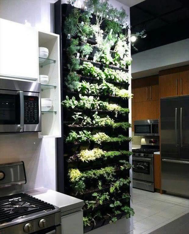 Resultado de imagem para horta vertical apartamento