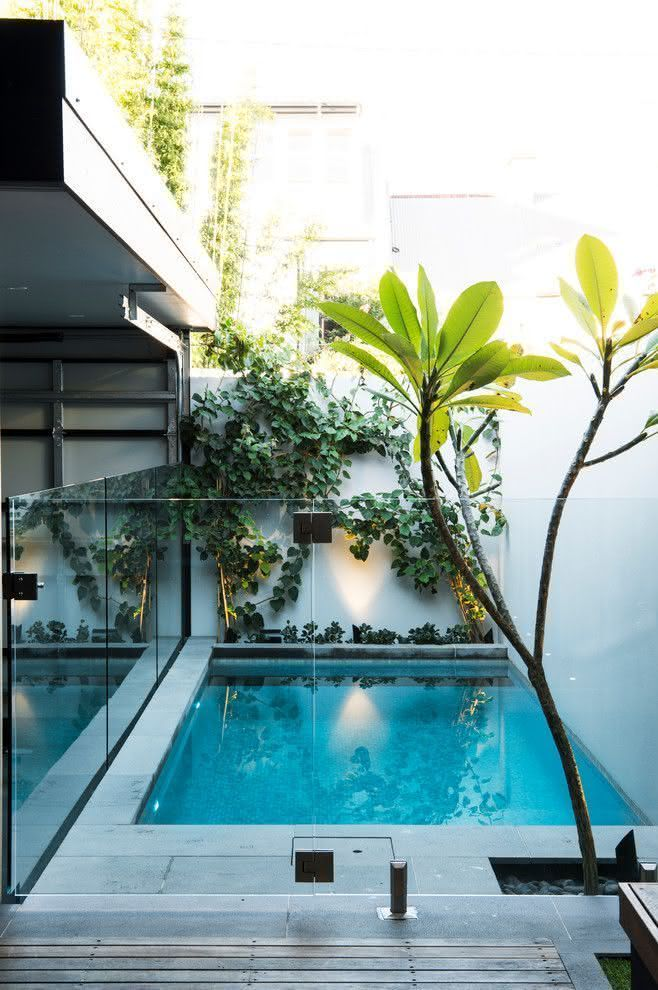 90 piscinas pequenas modelos projetos fotos lindas - Decoracion piscinas pequenas ...