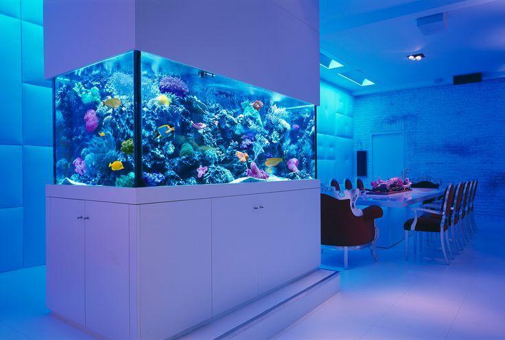Modelos de aquários na decoração