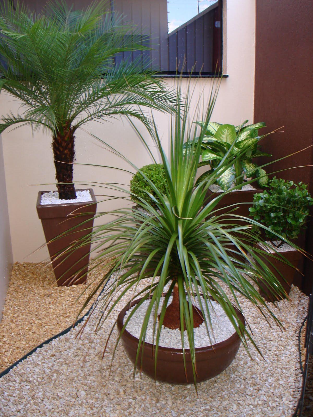 60+ Jardins com Pedras Decorativas Fotos Lindas