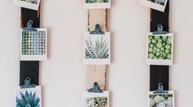 Mural de Fotos: 60+ Inspirações na decoração
