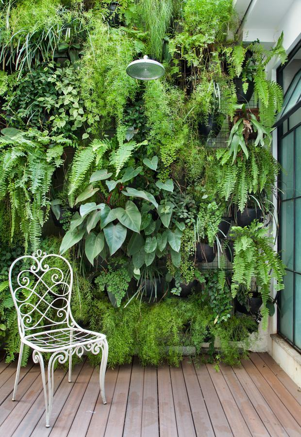 jardim vertical externo:Jardim Vertical: 60+ Modelos, Dicas & Fotos!
