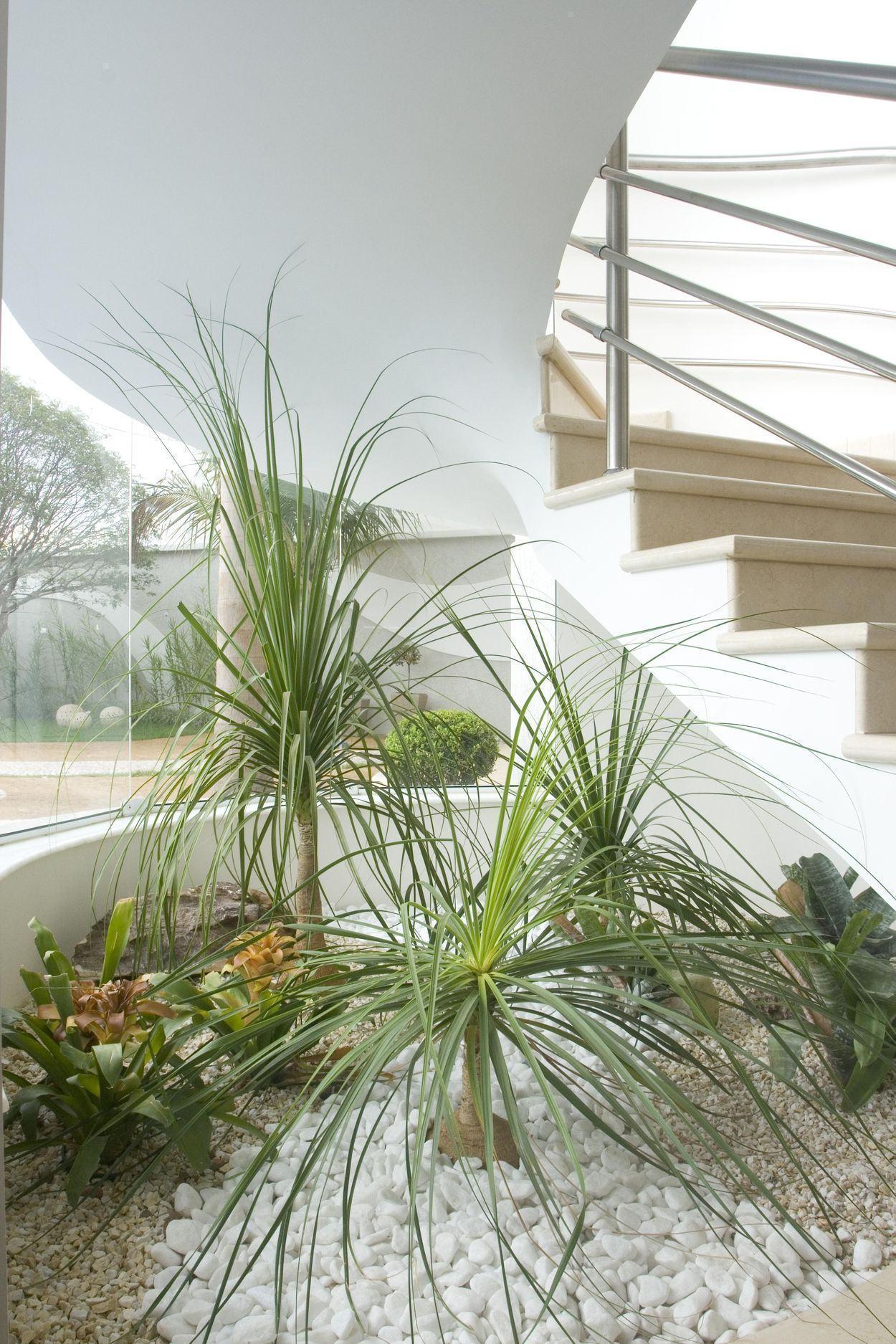 Jardim embaixo do vão da escada