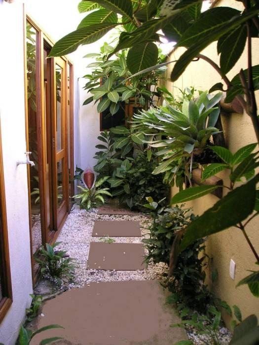 Pequena área externa da residência com plantas e pedras