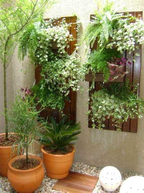 Jardim pequeno com plantas