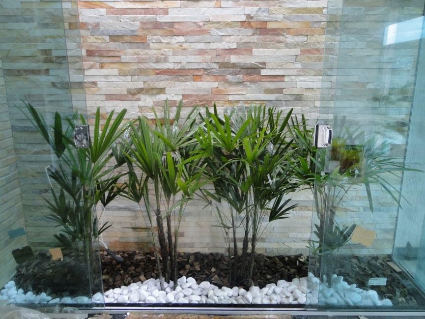 Jardim De Inverno Na Sala De Estar Fotos ~  lateral fechada por vidros para abrigar um belo jardim de inverno
