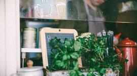 Horta em Casa: 68 Inspirações Incríveis para Começar!