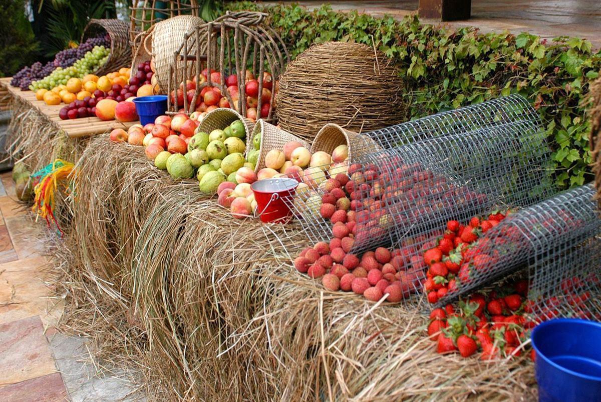 mesa-de-frutas-2