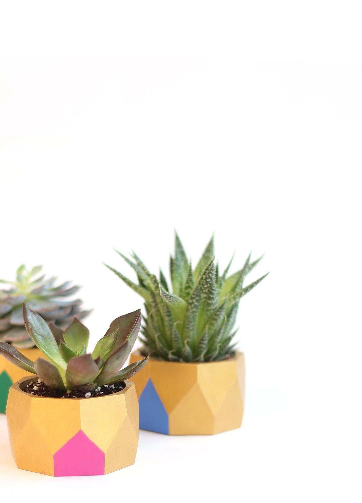 Vasos coloridos com detalhes geométricos em madeira