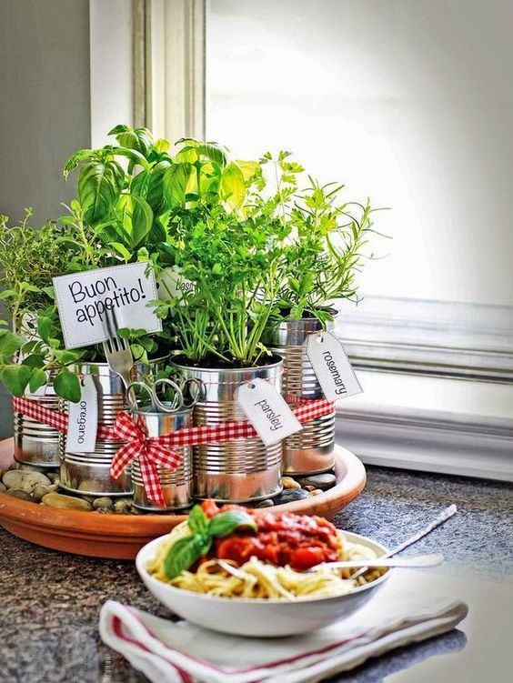 Latas de alimentos transformadas em vasos para plantas