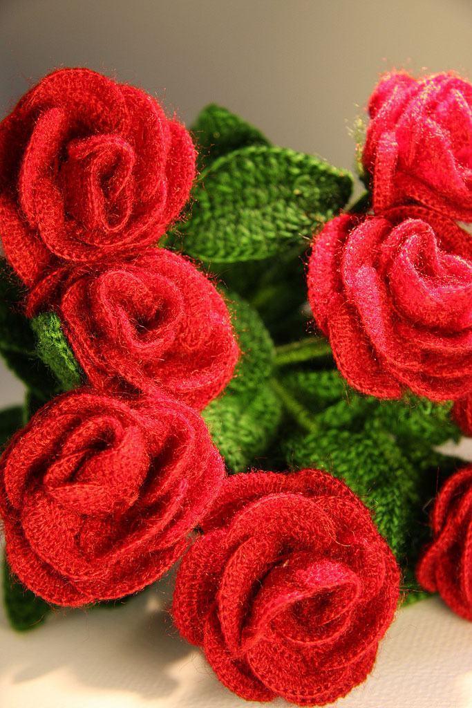 Rosas com cores vibrantes