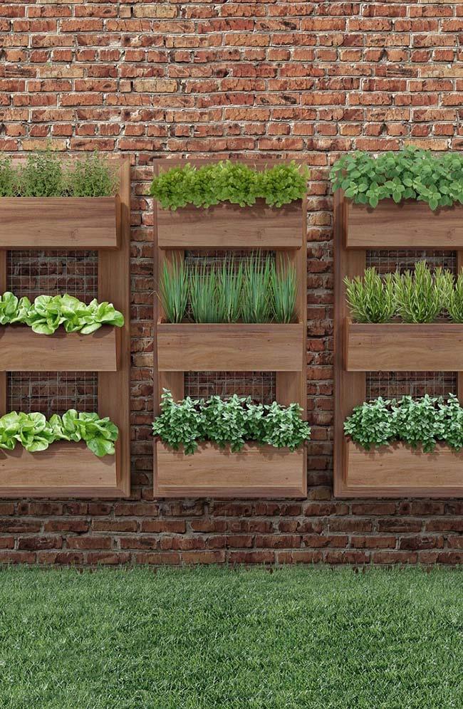 Ervas, hortaliças e temperos são ótimas opções para cultivo em jardins verticais residenciais