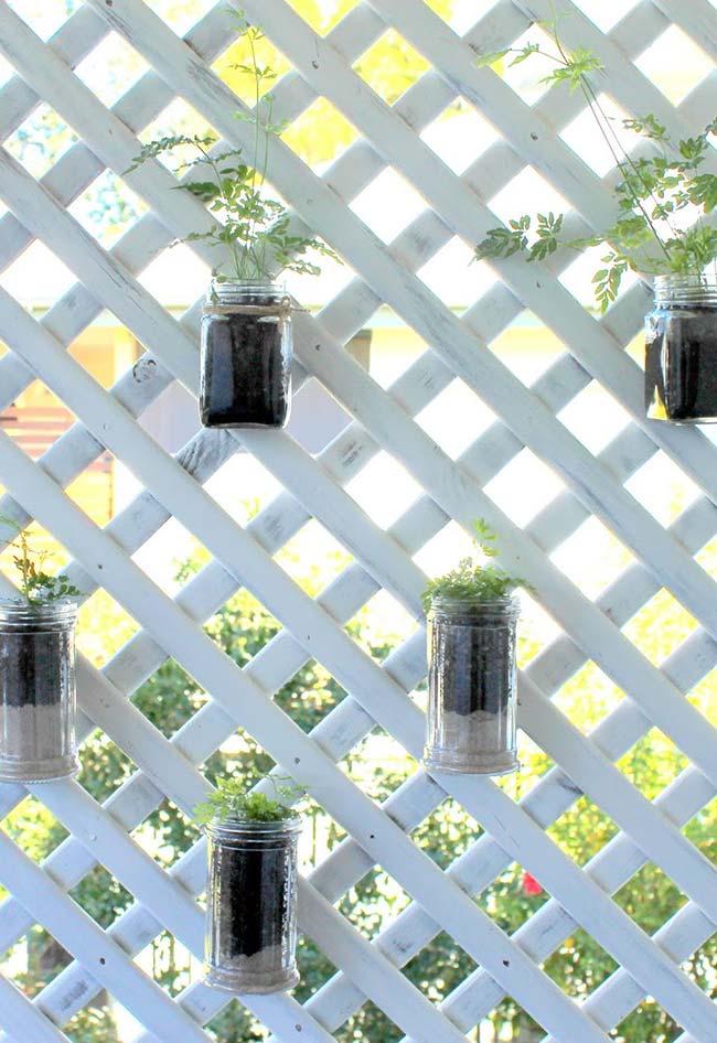 Painel de madeira sustenta os potes de vidro que servem como vasos para as mudas de folhagem