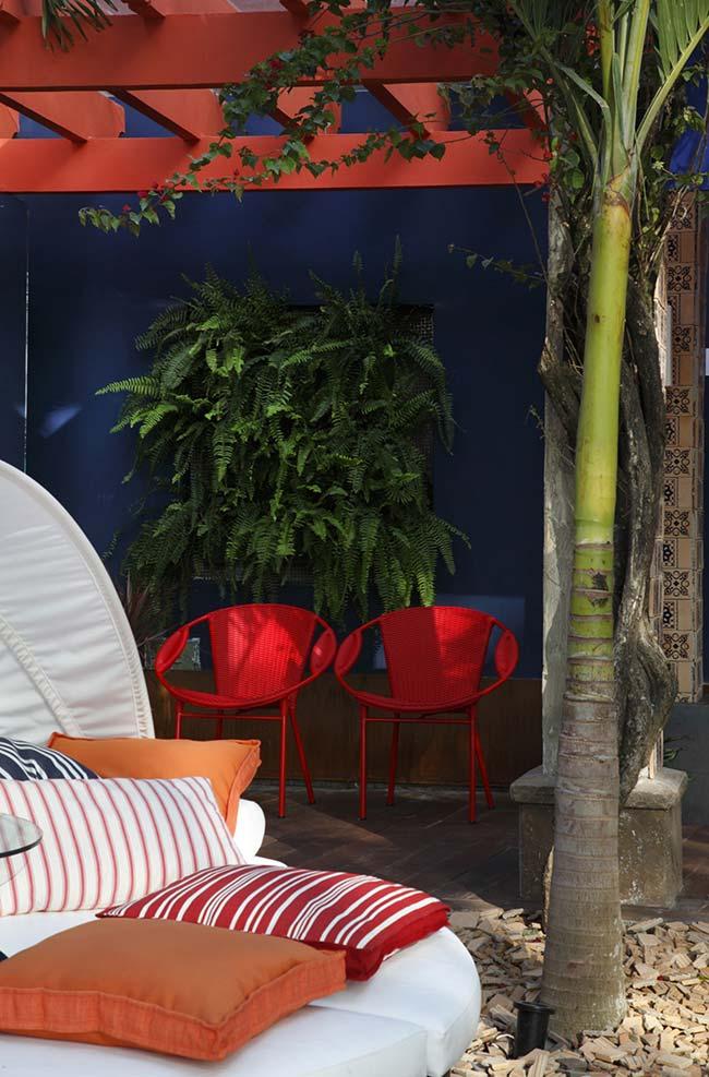 Área externa cheia de contrastes conta com um jardim vertical de samambaias sobre a parede azul