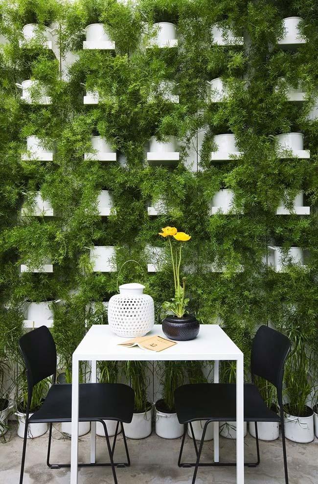 Jardim vertical formado por uma única espécie de planta pendente