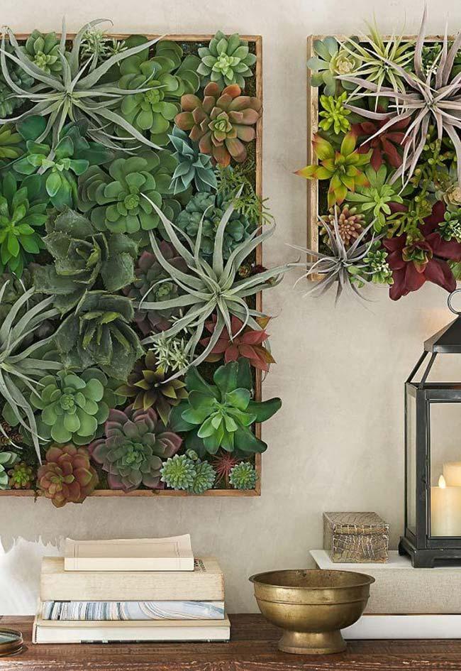 Dois minis e delicados quadros verdes de suculentas variadas