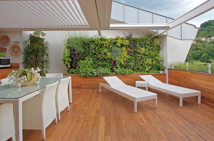 Teto de vidro garante a luminosidade que as plantas do jardim vertical precisam para se desenvolver