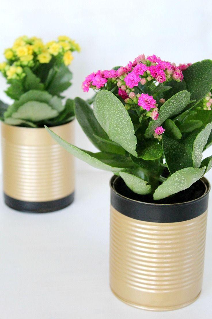 Retire as embalagens com água quente para deixar a textura da lata bem lisa.