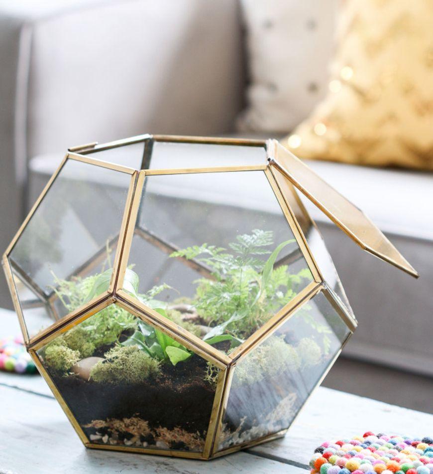 Terrário geométrico como tendência da decoração