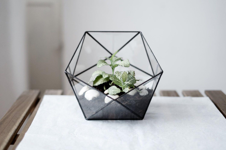 Recipiente de vidro moderno para montar um terrário
