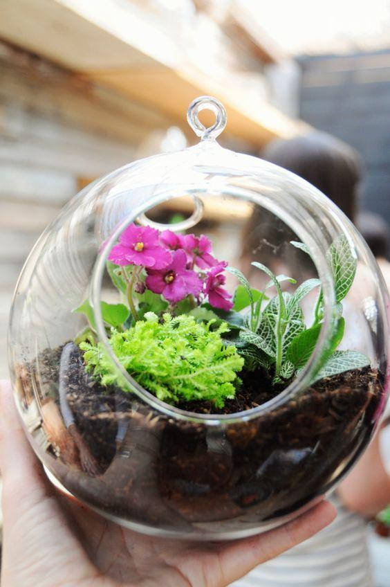 Terrário com plantas e flores