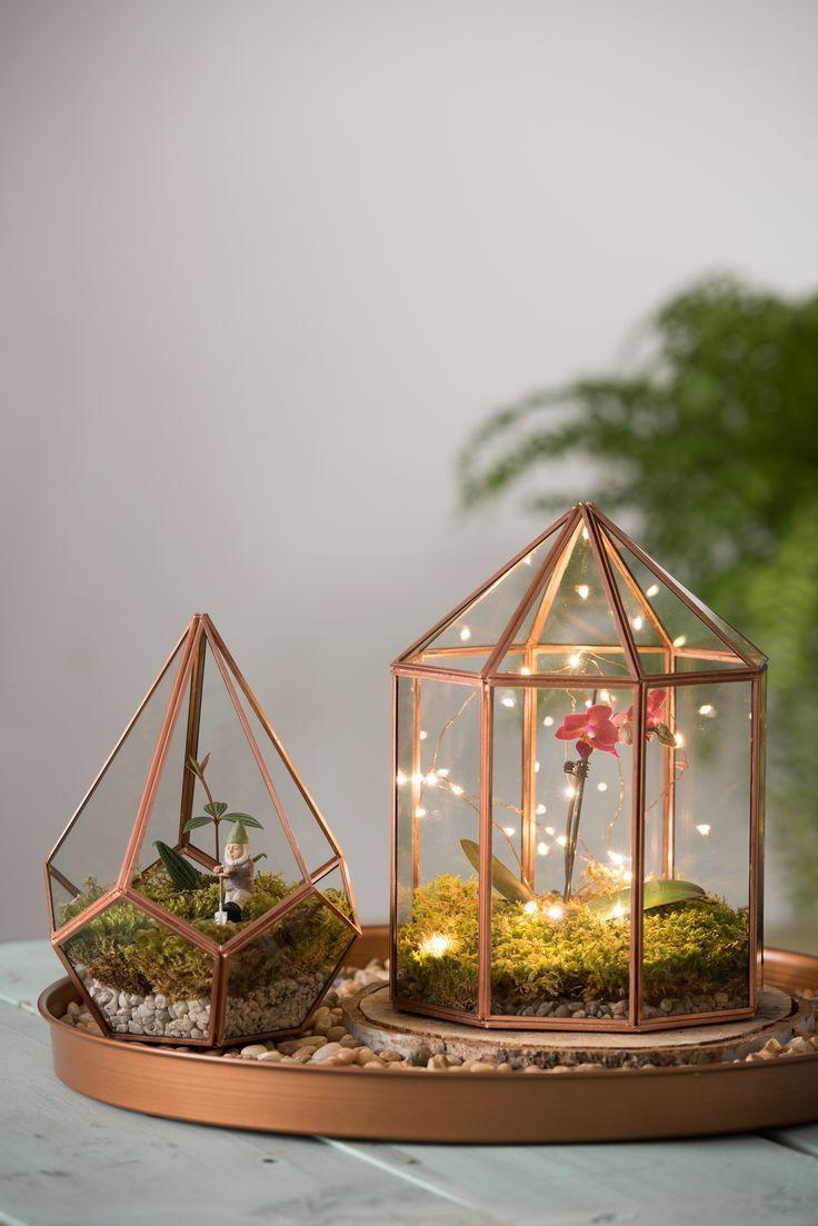 Terrários decorados com fios de luz