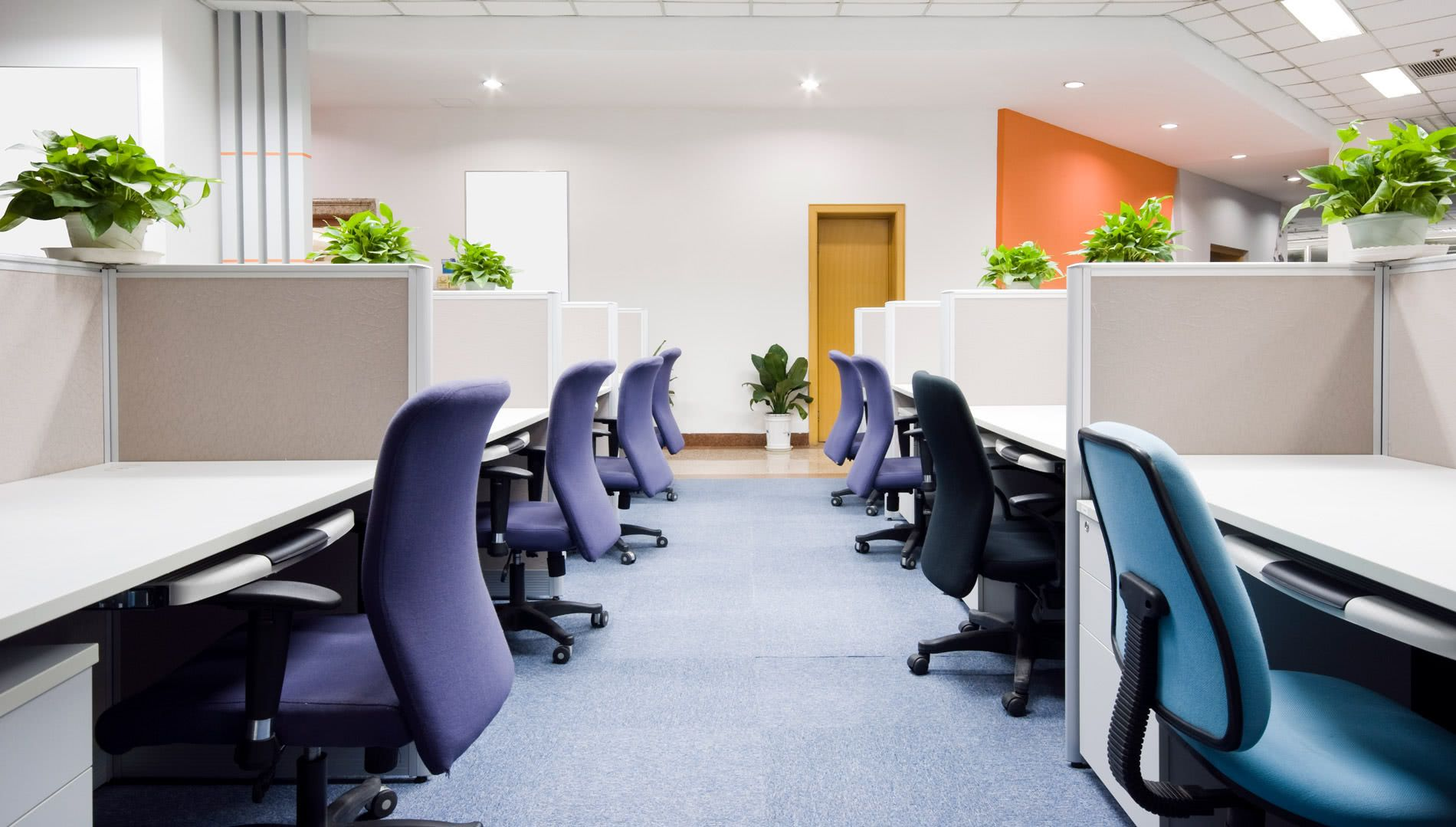 As cadeiras com cores diferentes determinam as funções dos funcionários.