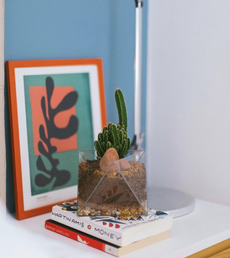 Recipiente de vidro com cactos dão um ar moderno e arrojado ao ambiente.