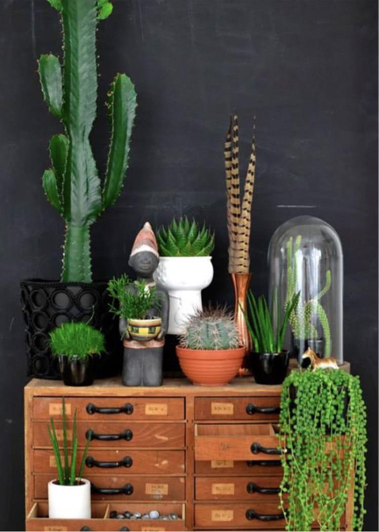 Aquela cômoda de casa pode se transformar em um cantinho cheio de plantas.