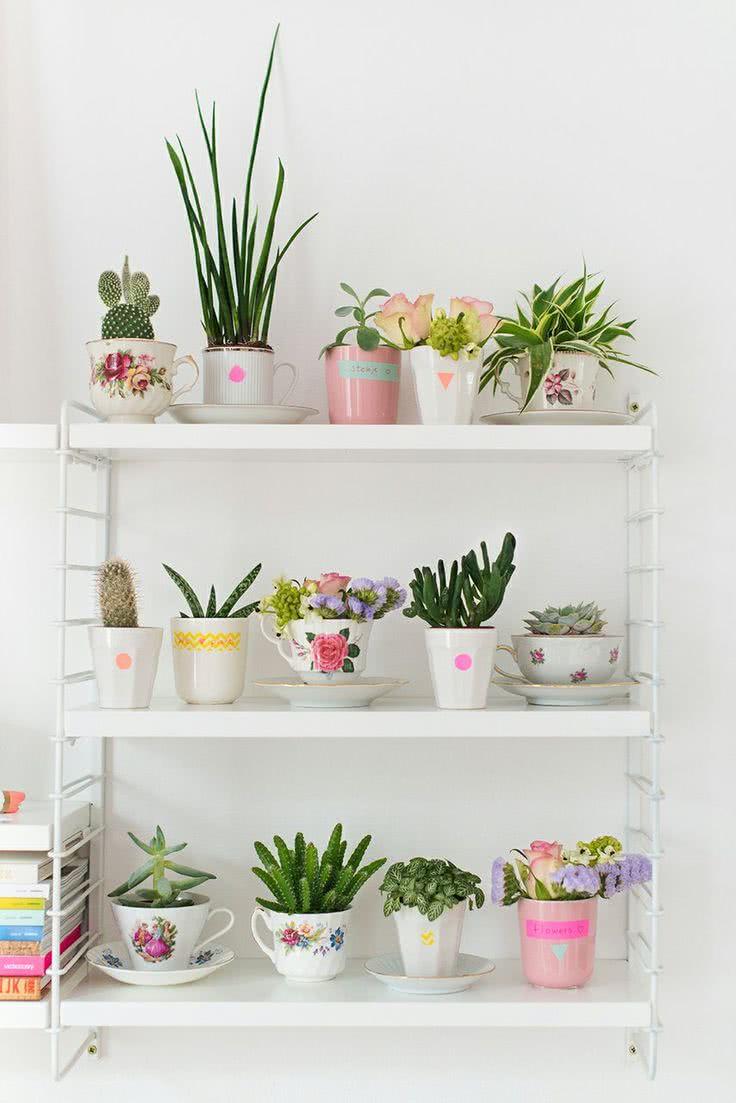 Monte uma composição de plantinhas em xícaras diferentes.