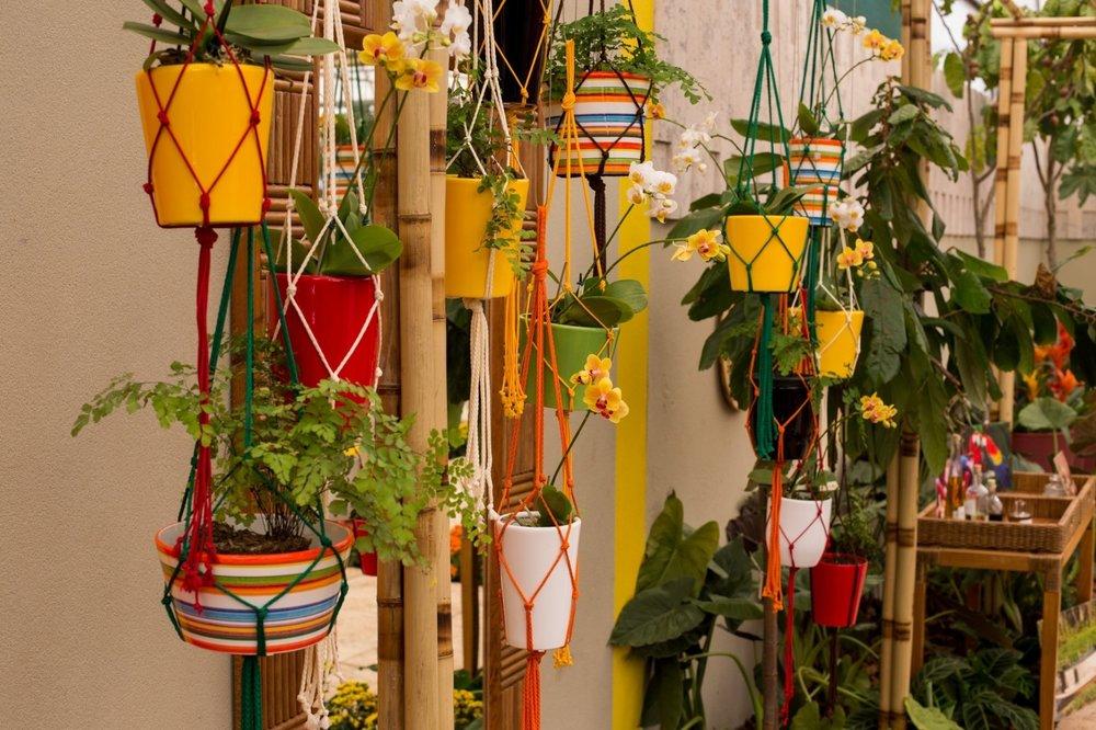 O bambu pode ser um vaso longo para as flores pequenas.