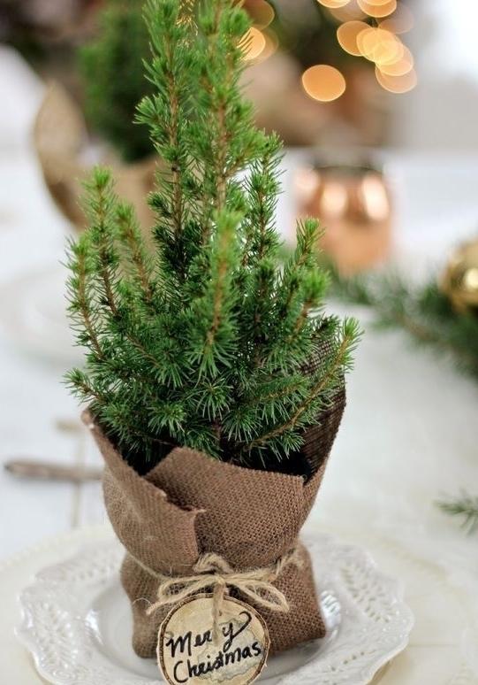 Mais uma mesa de Natal simples.