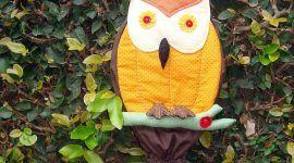 Puxa saco de coruja: 60 ideias com fotos e video passo a passo