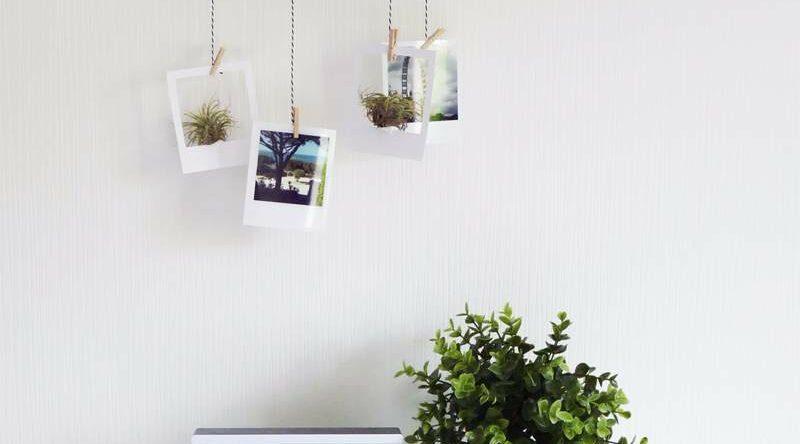 Varal de fotos: 65 fotos e ideias para decorar