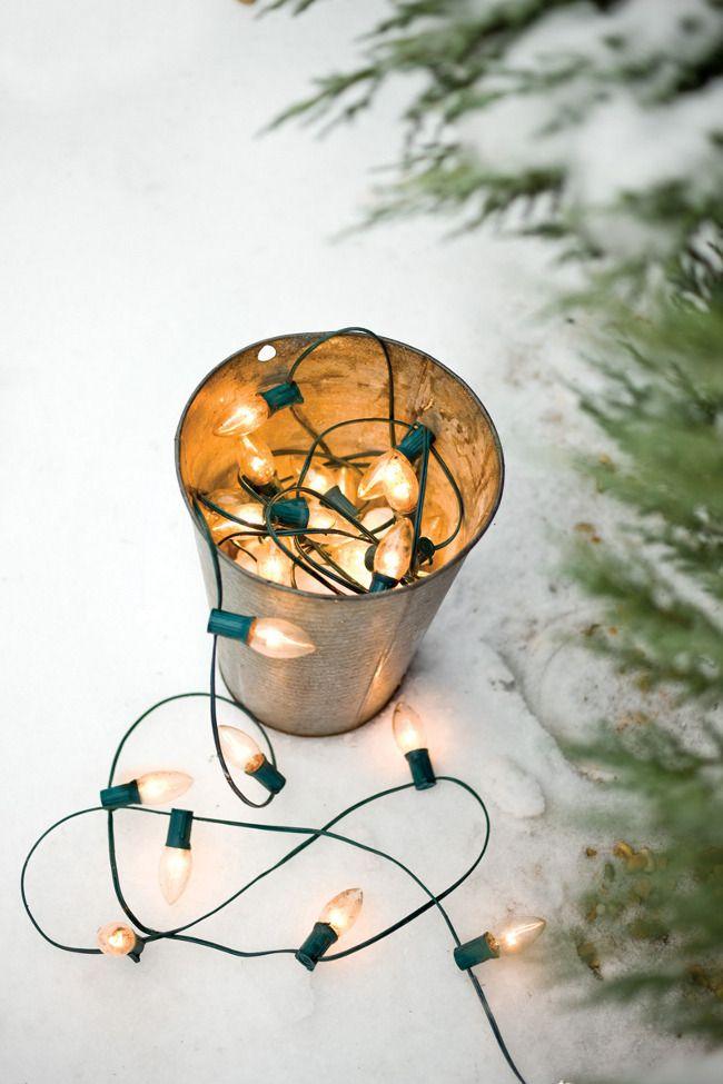 Pisca pisca em vaso de cobre